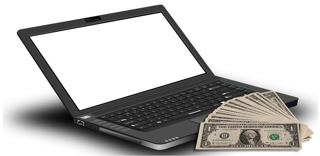 cum să faci bani online pentru un profesionist)