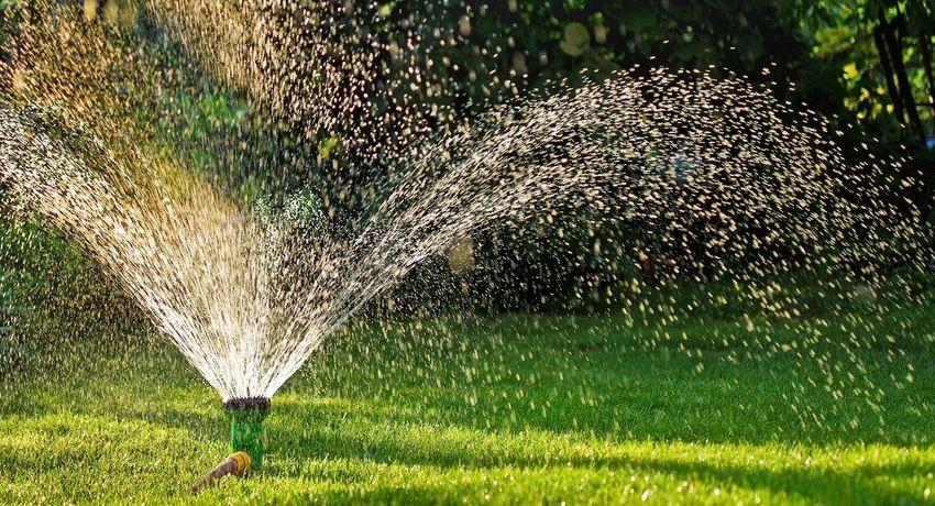 Sistem de irigare în țară: o varietate de opțiuni pentru plantele de irigații