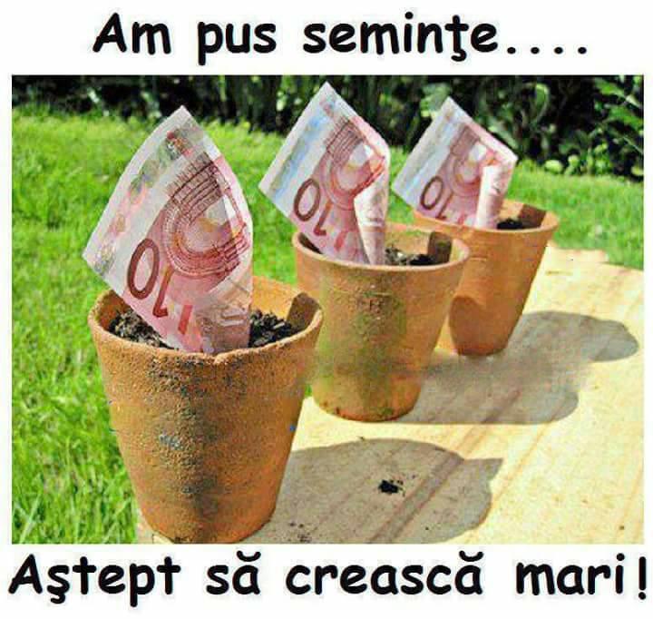 cum se fac bani