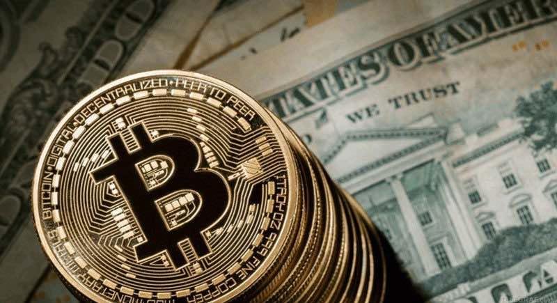 procentul bitcoin