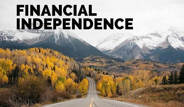 formula raportului de independență financiară