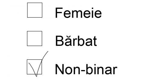 masculin altă opțiune binară)