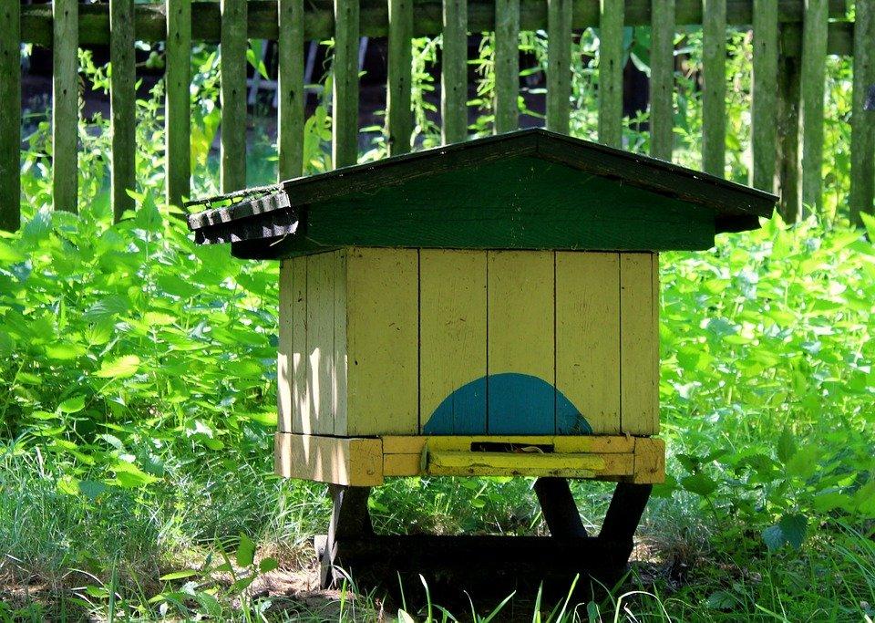 platformă de tranzacționare cu fagure de miere