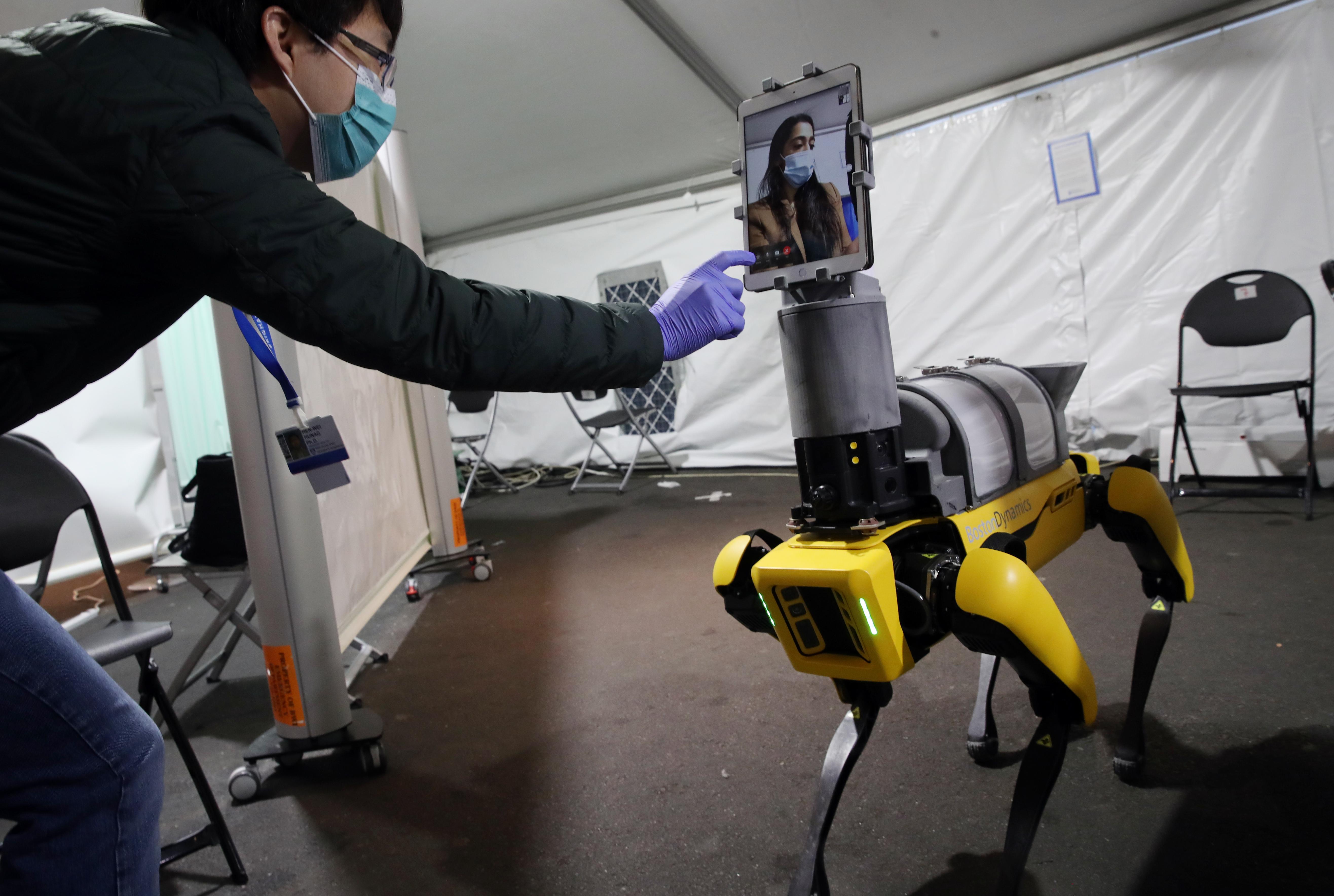 software robot comercial
