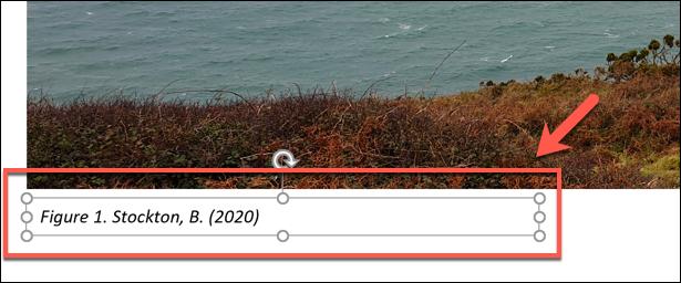 Pages pentru Mac: Adăugarea unei bibliografii într-un document Pages