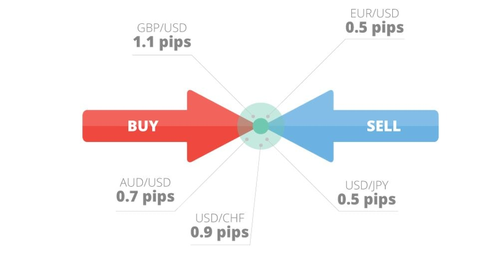 diferența dintre contul demo)