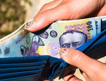 este posibil să câștigi bani într- o singură zi)
