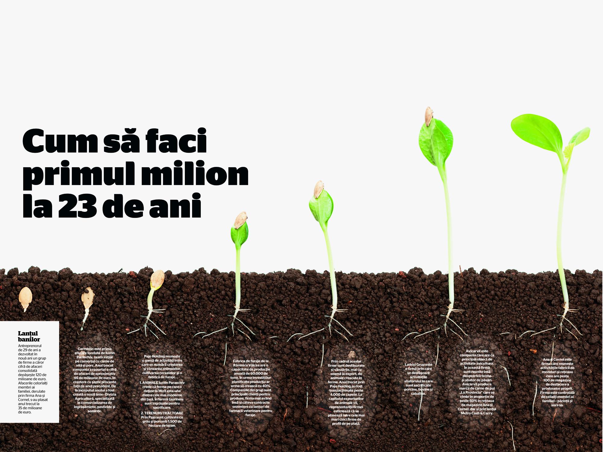 cum să faci rapid un milion într- un an)