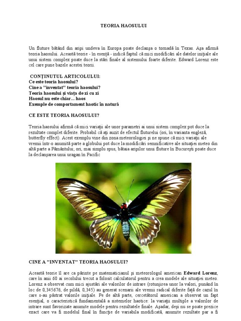 Globalizarea și efectul fluturelui - 2021 - Talkin go money
