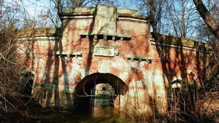opțiuni pe forturi