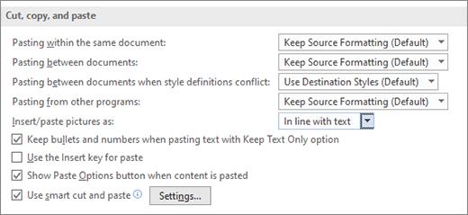 Controlul formatării la lipirea textului