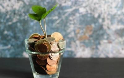 calea către financiar și libertate