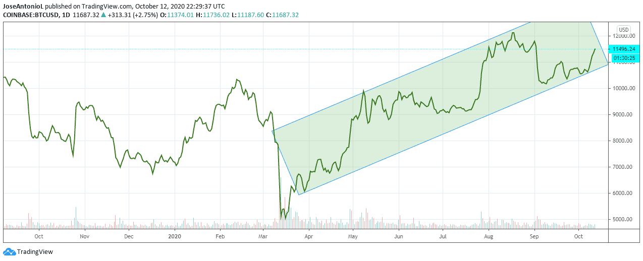 grafic usd bitcoin 10 ani)