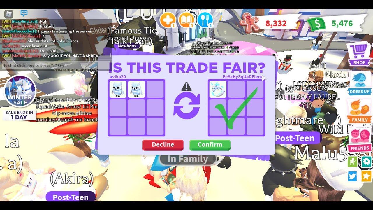 ooo elera trading