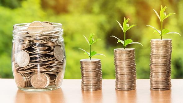 Idei de afaceri cu care poti castiga bani lucrand acasa