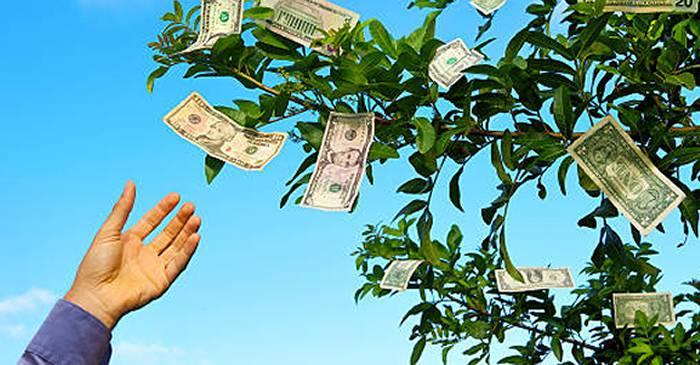 câștigând bani fără a face nimic)