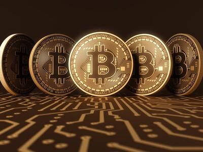 câștigurile din tranzacționarea bitcoin)