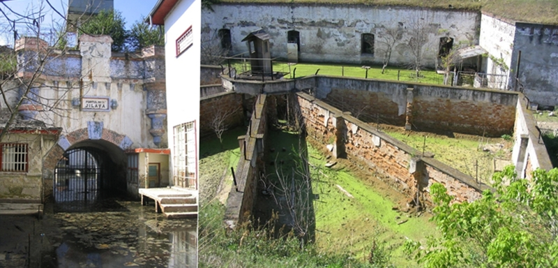 exemplu forturi de opțiune)