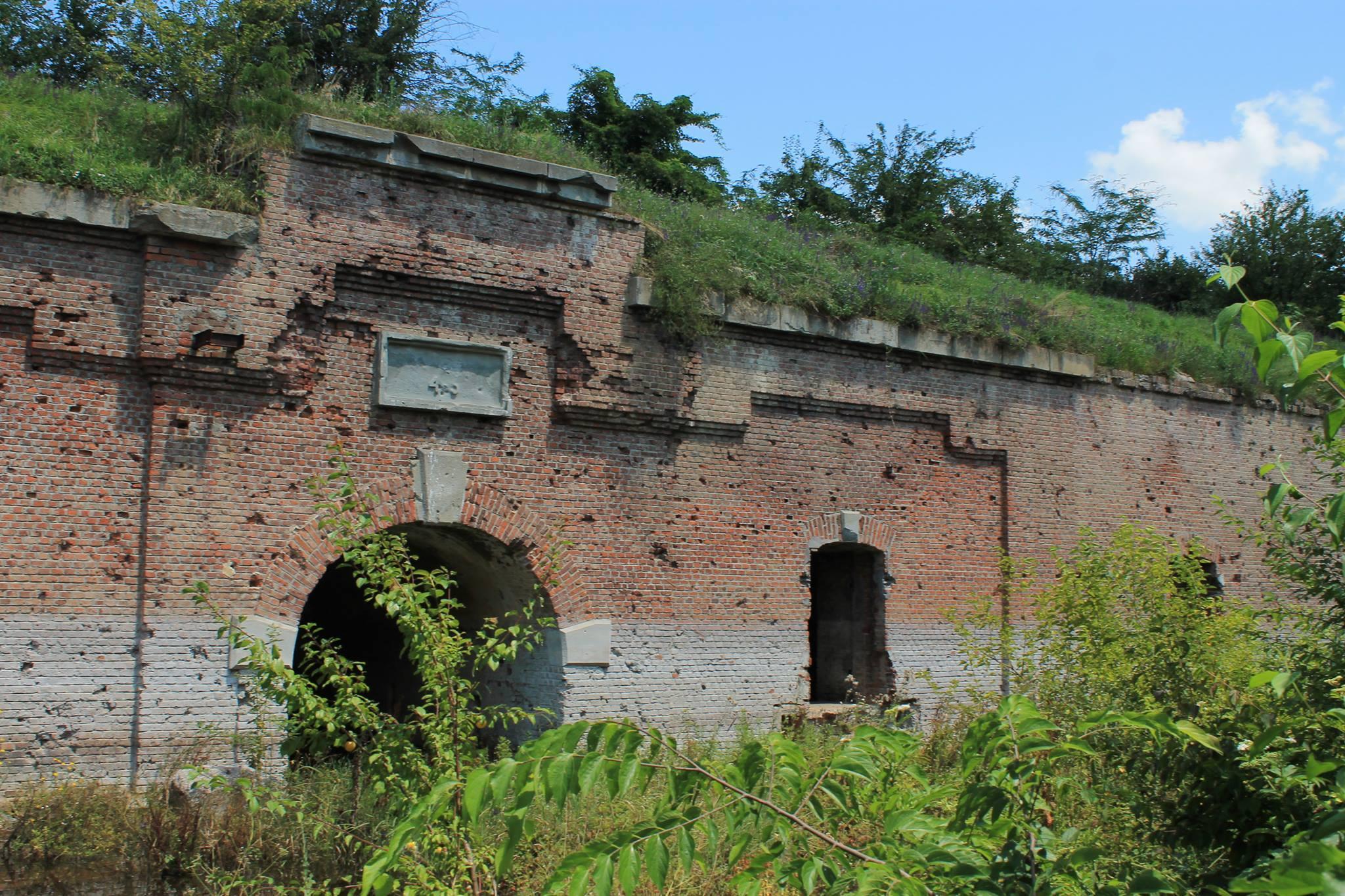cele mai populare opțiuni pentru forturi